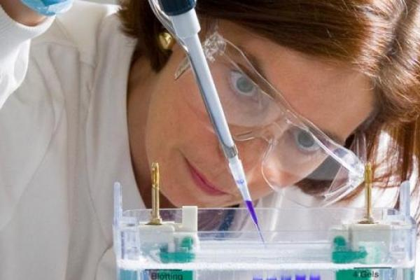 Progress In Ovarian Cancer Treatments Announced At Major Cancer Conference Target Ovarian Cancer